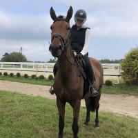 Dzuta 3.aastane mära