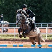 4-a Eesti sporthobune Watson
