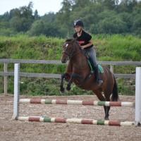 Angelica, eesti mära, sobilik ratsakooli